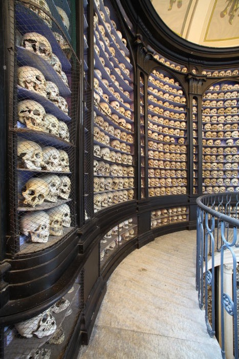 Cranial Stacks of the Bibliothèque Verrotten